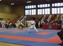Bild 10 von der Karate DM 2008