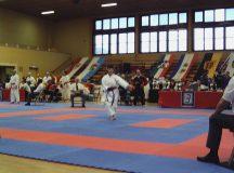 Deutsche Karatemeisterschaft 2008 Bild 11