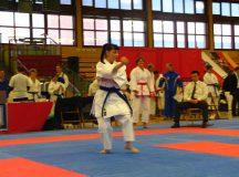 Bild 5 von der Karate DM der Masterklassen 2008