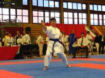 Bild 6 von der Karate DM der Masterklassen 2008