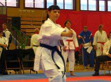 Bild 7 von der Karate DM der Masterklassen 2008