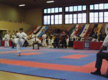 Karate-DM-2008-9